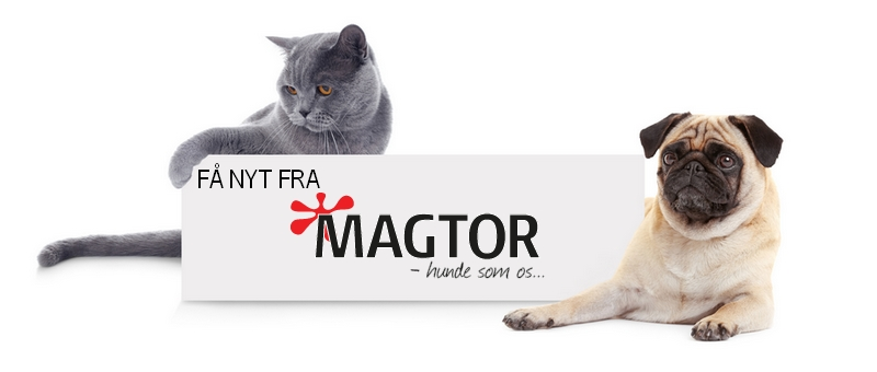 Få nyhedsbreve fra Magtor