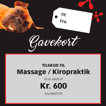 Giv et gavekort til behandlinger hos Magtor