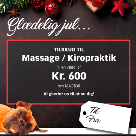 Giv et gavekort til Magtor i julegave